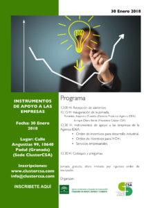 Presentación Incentivos Agencia IDEA